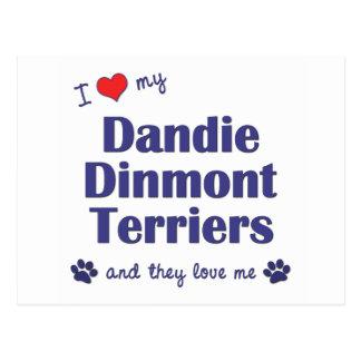 I Love My Dandie Dinmont Terriers (Multiple Dogs) Postcard