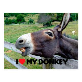 I Love My Donkey Funny Mule Farm Animal Postcard