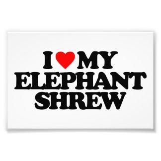 I LOVE MY ELEPHANT SHREW ART PHOTO
