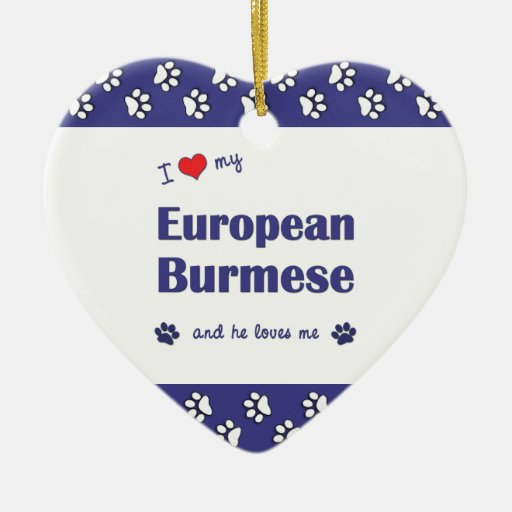 I Love My European Burmese (Male Cat) Christmas Ornament