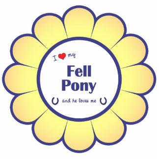 I Love My Fell Pony (Male Pony) Photo Sculpture Decoration