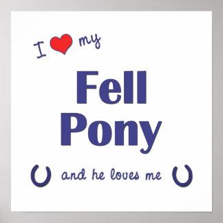 I Love My Fell Pony Male Pony Print