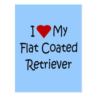 I Love My Flat Coated Retriever Dog Lover Gifts Post Cards