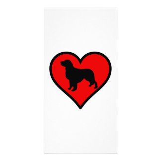 I Love my Golden Retriever dog Silhouette Heart Picture Card