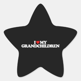 I LOVE MY GRANDCHILDREN STICKER