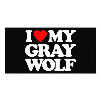 I LOVE MY GRAY WOLF PHOTO GREETING CARD