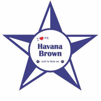 I Love My Havana Brown Male Cat Photo Sculptures