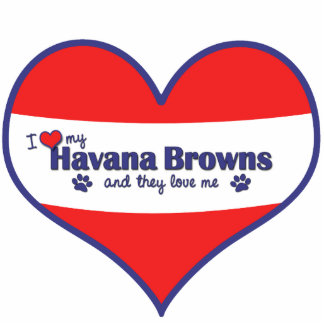 I Love My Havana Browns (Multiple Cats) Photo Sculpture Decoration