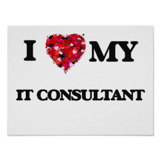I love my It Consultant Poster