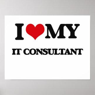 I love my It Consultant Print