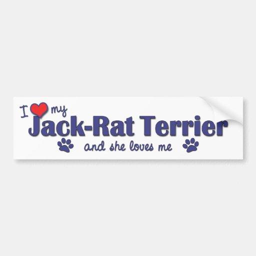 I Love My Jack-Rat Terrier (Female Dog) Bumper Stickers