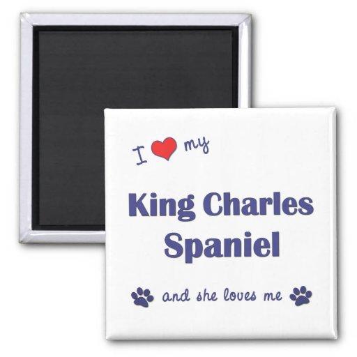 I Love My King Charles Spaniel (Female Dog) Refrigerator Magnets
