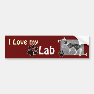 I love my Lab Bumper Sticker
