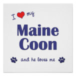 I Love My Maine Coon (Male Cat) Poster