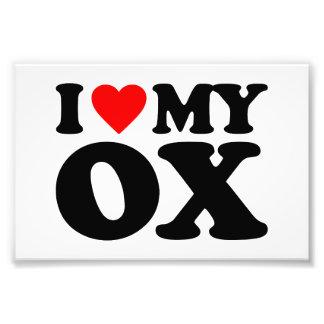 I LOVE MY OX PHOTO