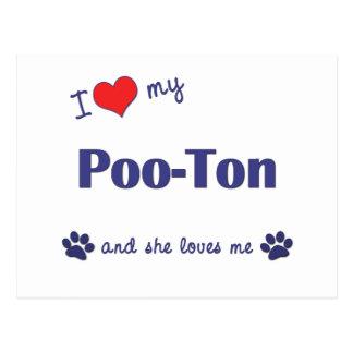 I Love My Poo-Ton (Female Dog) Postcard
