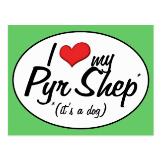I Love My Pyr Shep It s a Dog Postcard