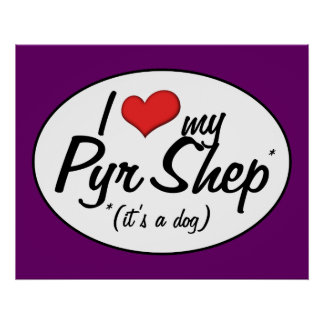 I Love My Pyr Shep It s a Dog Poster