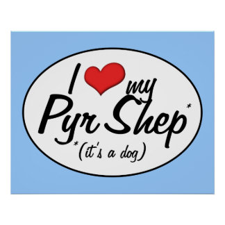 I Love My Pyr Shep (It's a Dog) Poster