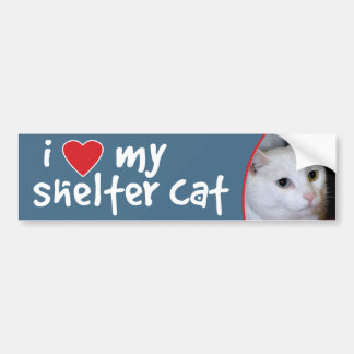 I Love My Shelter Cat Bumper Sticker-All-White Cat Bumper Sticker