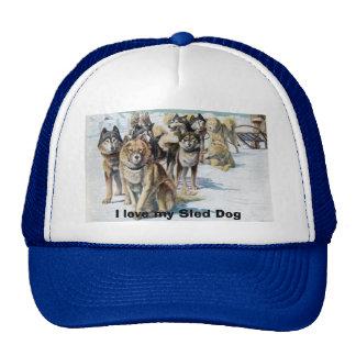 I love my Sled Dog Hat