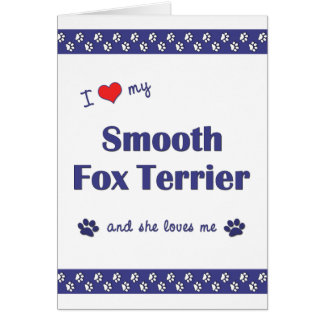 I Love My Smooth Fox Terrier (Female Dog) Greeting Cards