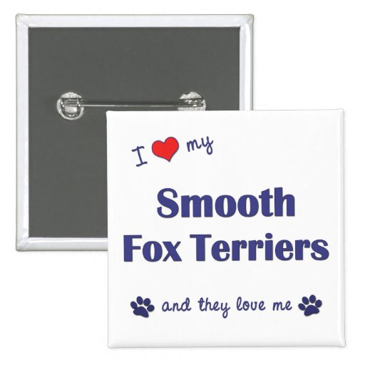 I Love My Smooth Fox Terriers (Multiple Dogs) Buttons