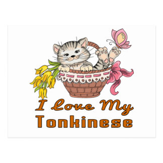 I Love My Tonkinese Postcard