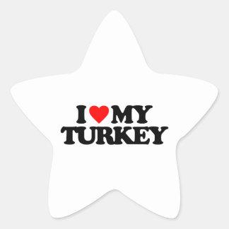 I LOVE MY TURKEY STICKERS