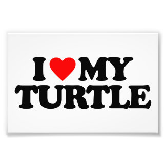 I LOVE MY TURTLE PHOTOGRAPHIC PRINT