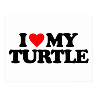I LOVE MY TURTLE POSTCARD