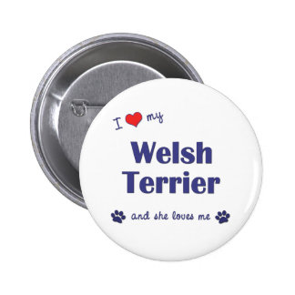 I Love My Welsh Terrier (Female Dog) Pinback Button
