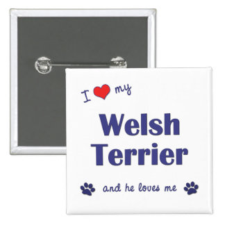 I Love My Welsh Terrier (Male Dog) Pinback Buttons