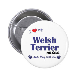 I Love My Welsh Terrier Mixes (Multiple Dogs) Buttons