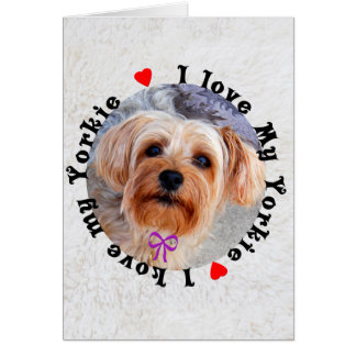 I love my Yorkie Female Yorkshire Terrier Dog Note Card