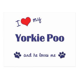 I Love My Yorkie Poo (Male Dog) Postcard