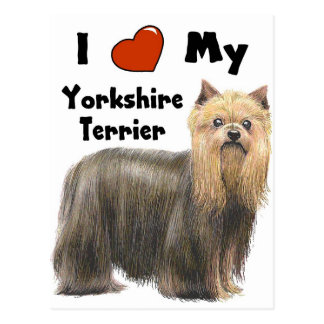 I Love My Yorkie Postcard
