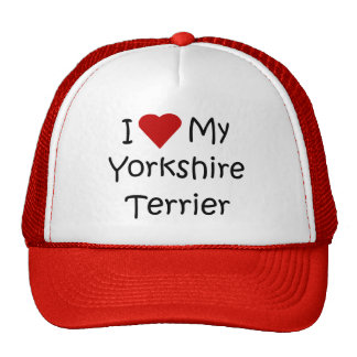 I Love My Yorkshire Terrier Dog Breed Lover Gifts Trucker Hat