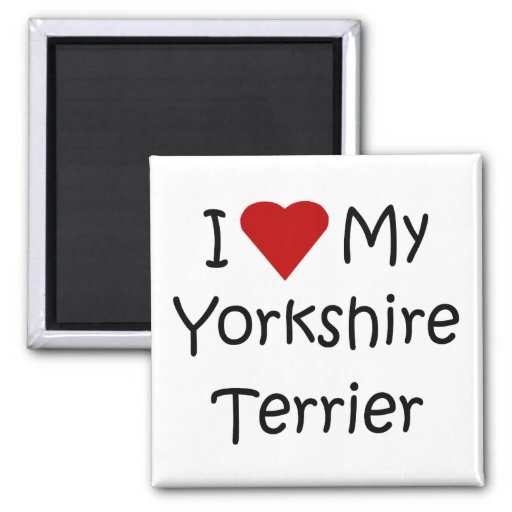 I Love My Yorkshire Terrier Dog Breed Lover Gifts Magnets