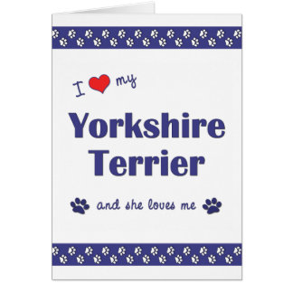 I Love My Yorkshire Terrier (Female Dog) Note Card