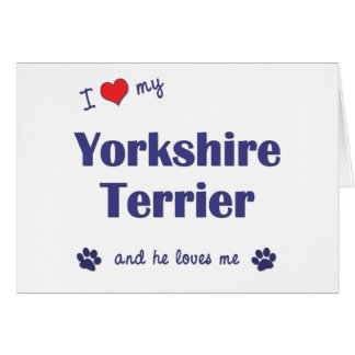 I Love My Yorkshire Terrier (Male Dog) Greeting Card