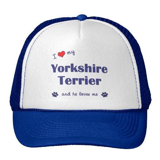 I Love My Yorkshire Terrier (Male Dog) Hats