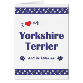 I Love My Yorkshire Terrier (Male Dog) Note Card