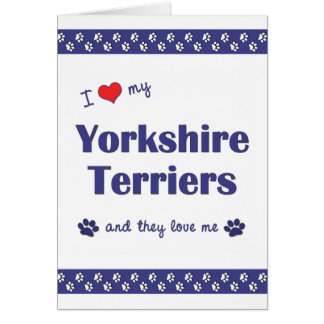 I Love My Yorkshire Terriers (Multiple Dogs) Note Card