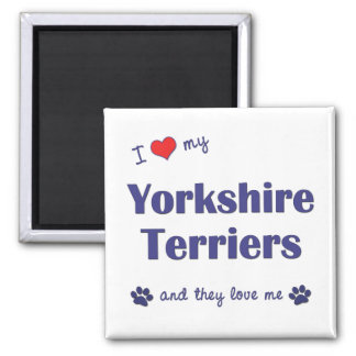 I Love My Yorkshire Terriers (Multiple Dogs) Square Magnet