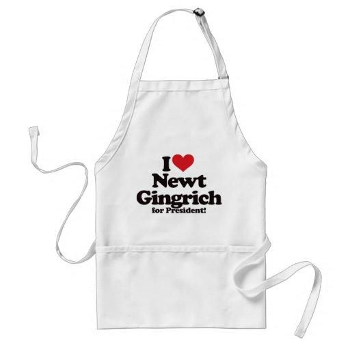I Love Newt Gingrich for President Apron