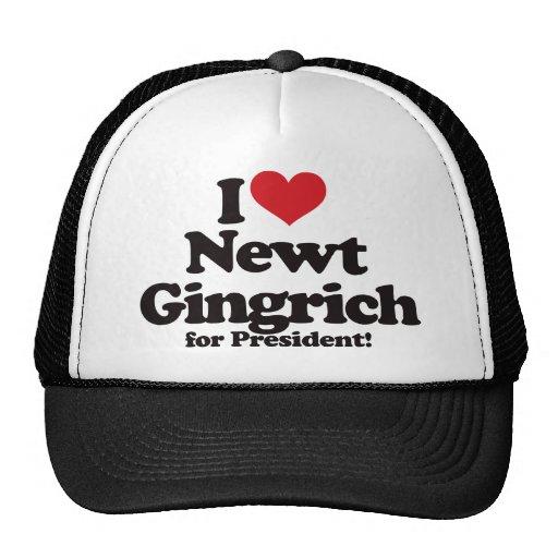 I Love Newt Gingrich for President Hat