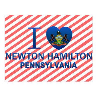 I Love Newton Hamilton, PA Postcard