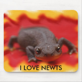 I Love Newts Mouse Pad