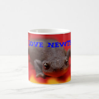 I Love Newts Mugs
